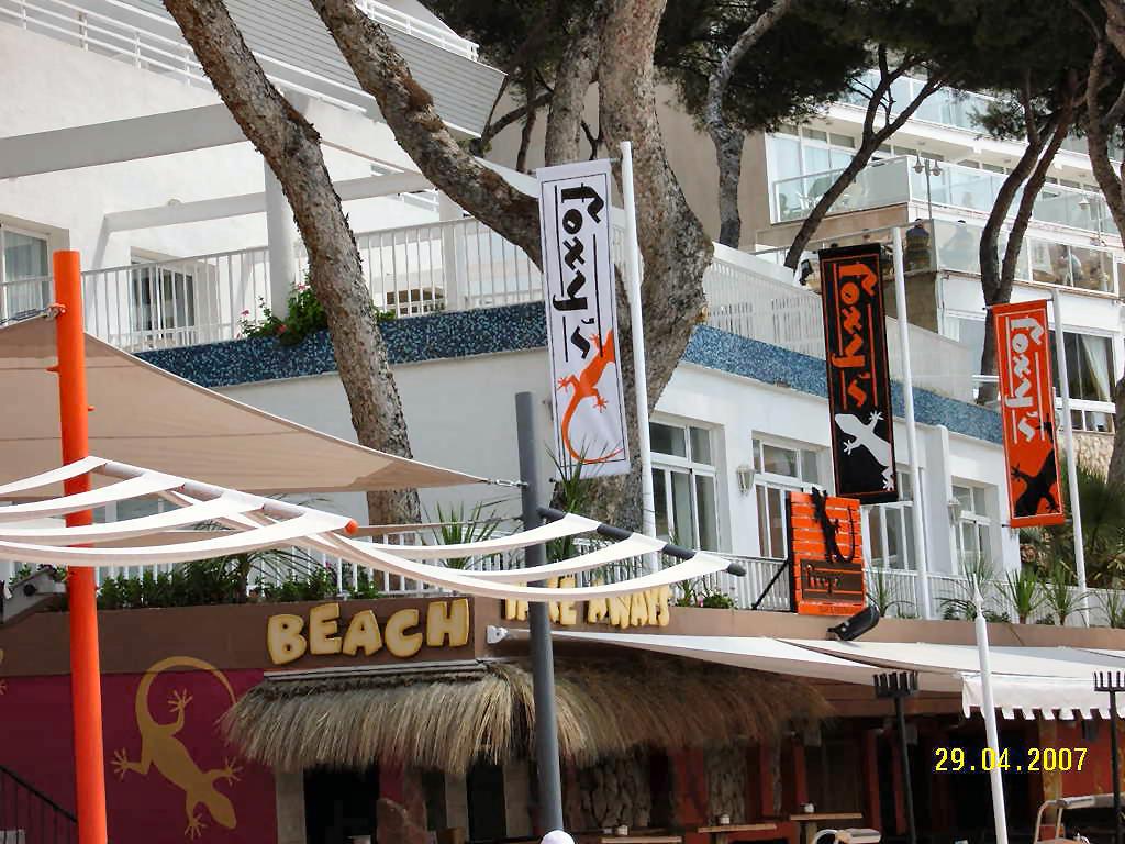 Foxy banners